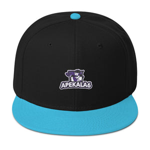 s-a6 EMBROIDERED FLAT BRIM  SNAPBACK