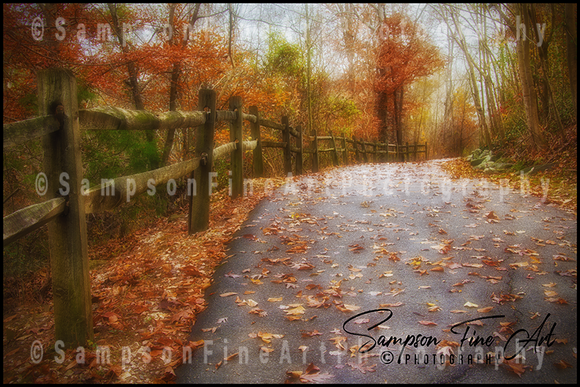 Crisp Fall Colors with Country Fence Color Photograph - sasyjamdesigns
