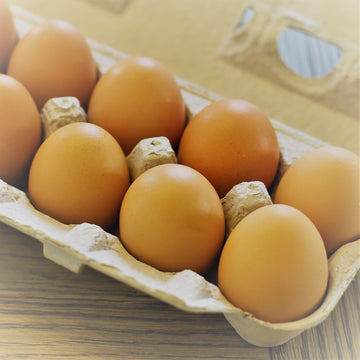 Chicken Eggs, Pasture Raised, Large to Extra-Large