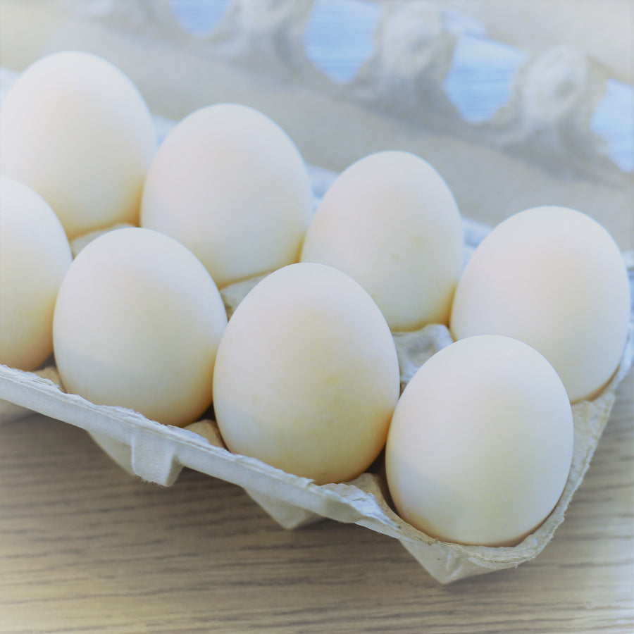 Duck Eggs, Pasture Raised, Jumbo