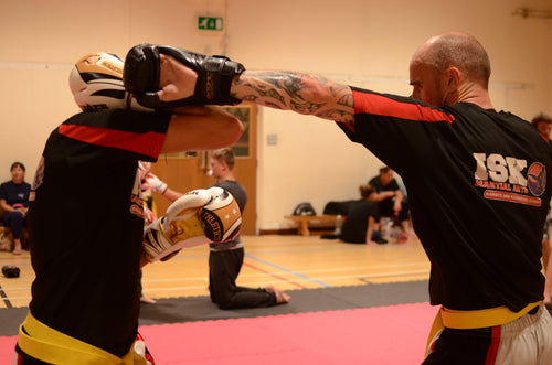 MIXED KICKBOXING - JAN SPECIAL