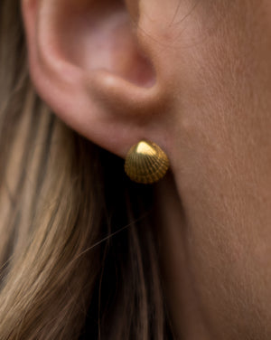 Gold Shell Studs