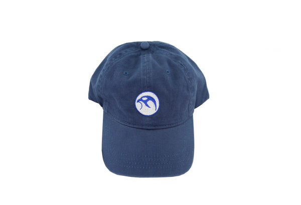 Falcanna Dad Hat Ash Blue