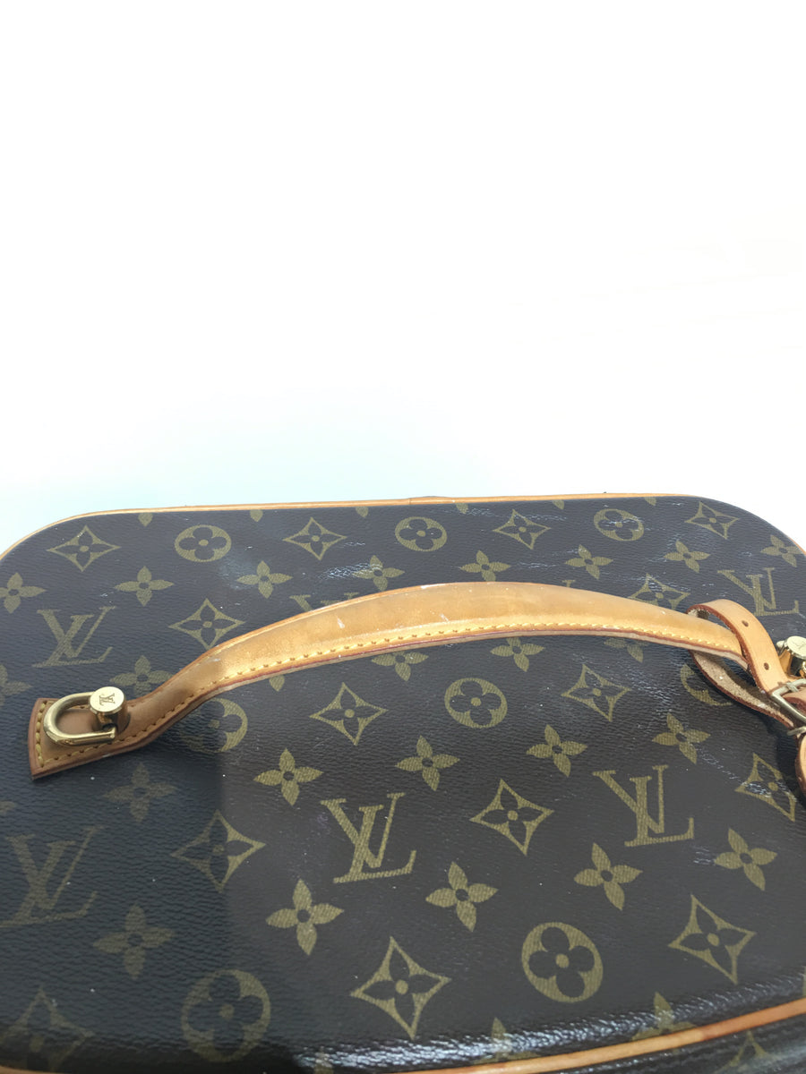 LOUIS VUITTON/MAKEUP CASE/Other/BRW/Leather/Monogram