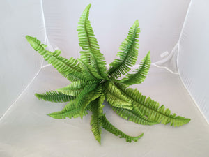 Large green 18 leaves - Fern