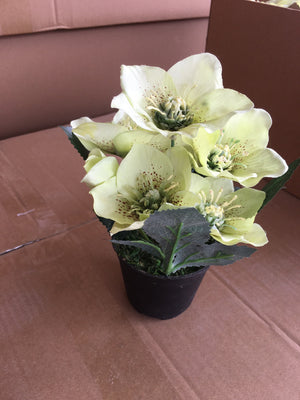 Pot Flower - Green ( 9352272000204)