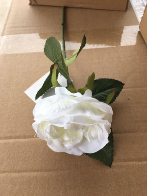 Rose Small Single - White (9352272000129)