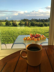 """alt=""""A morning cup of Hog Heaven coffee overlooking the pacific ocean"""""""