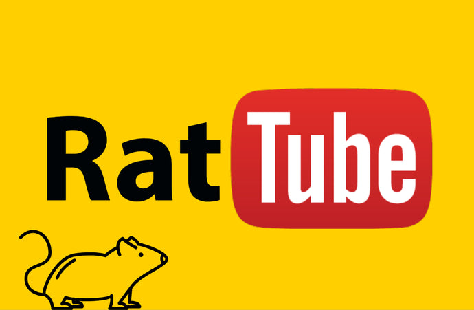 Top Rat Youtube Channels!
