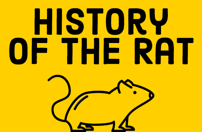 Origins Of The Rat