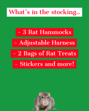 Ratty Christmas Stocking