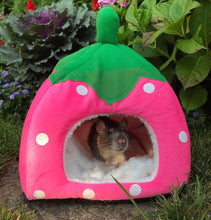 Giant Strawberry Hut