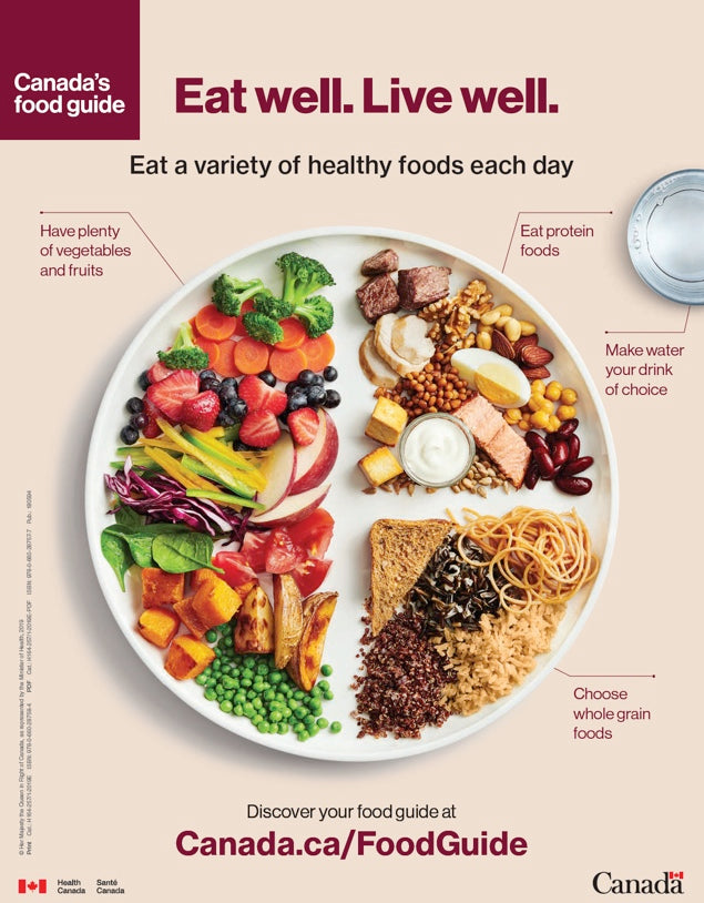 Canada's Food Guide 2019: Eat well. Live well. Snapshot
