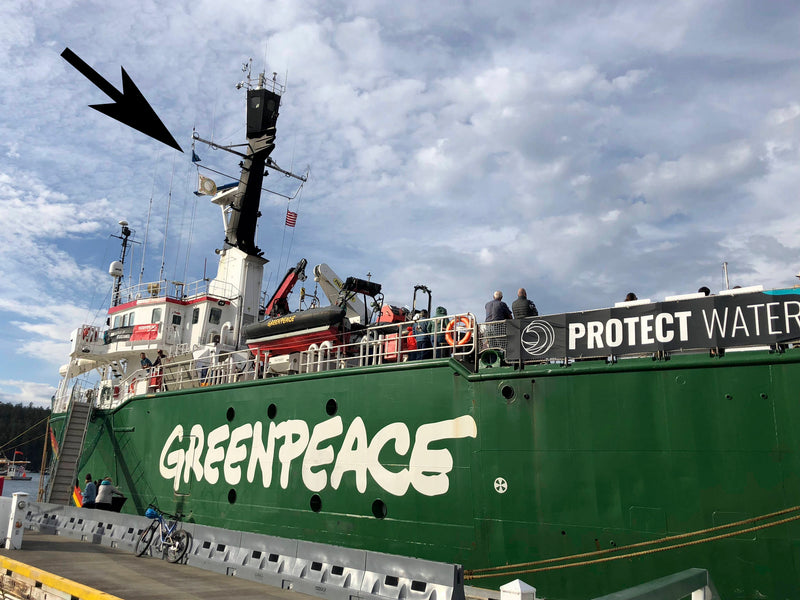 Greenpeace Hoists Flag in Support of Orca Protectors