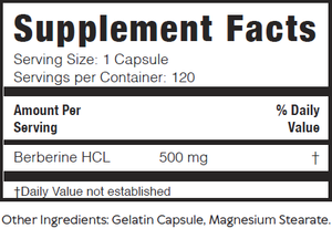 Ultra-Pure Berberine - Brain Bean