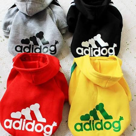 dog hoody with