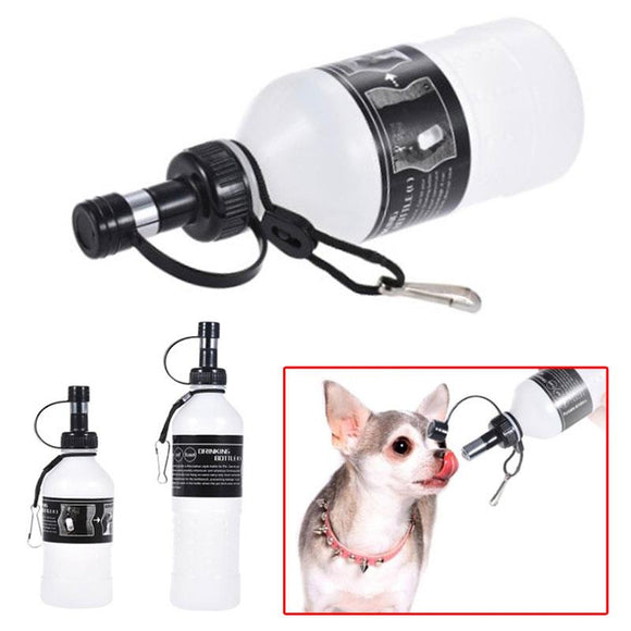 Portable pet water bottle with lixit ball bearing tube