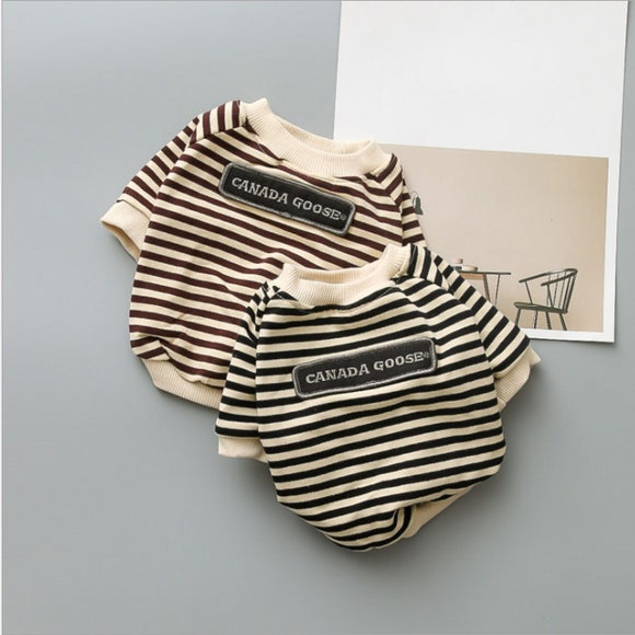 Striped Artist Shirt