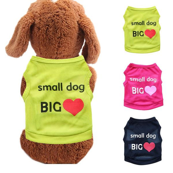Small Dog Big Heart Tee