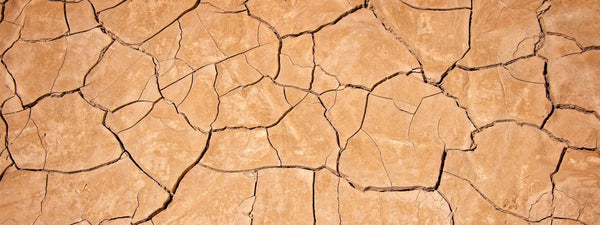 Why so dry?  Real Talk on a Formerly Taboo Topic