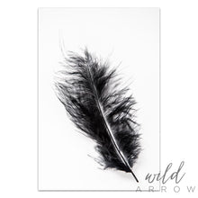 Load image into Gallery viewer, Black Feather Photographic
