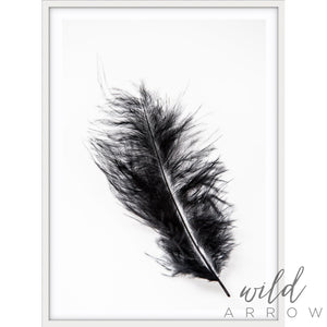 Black Feather Photographic