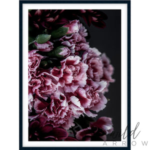 Carnations Photographic