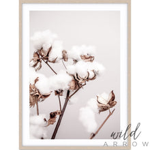 Load image into Gallery viewer, Cotton Plant Photographic