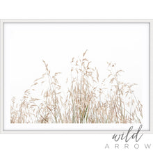Load image into Gallery viewer, Country Grass Photographic