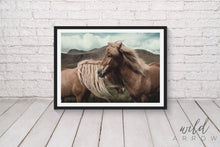 Load image into Gallery viewer, True Brumbies Print Photographic