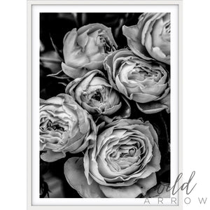 Vintage Rose - B & W Photographic