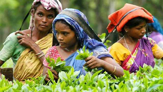 Fairtrade and Women