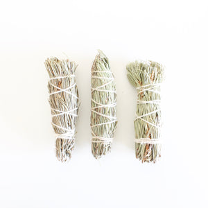 Small Pine Smoke Cleansing Wand. Natural Incense. Uplifting Energetic Hygiene.