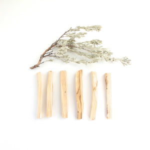 Palo Santo Stick. Natural Incense. Holy Wood. Space + Energy Clearing. Pack of 6. - Lesley Saligoe Botanicals