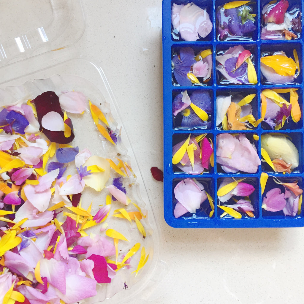 edible flower ice cubes spring party