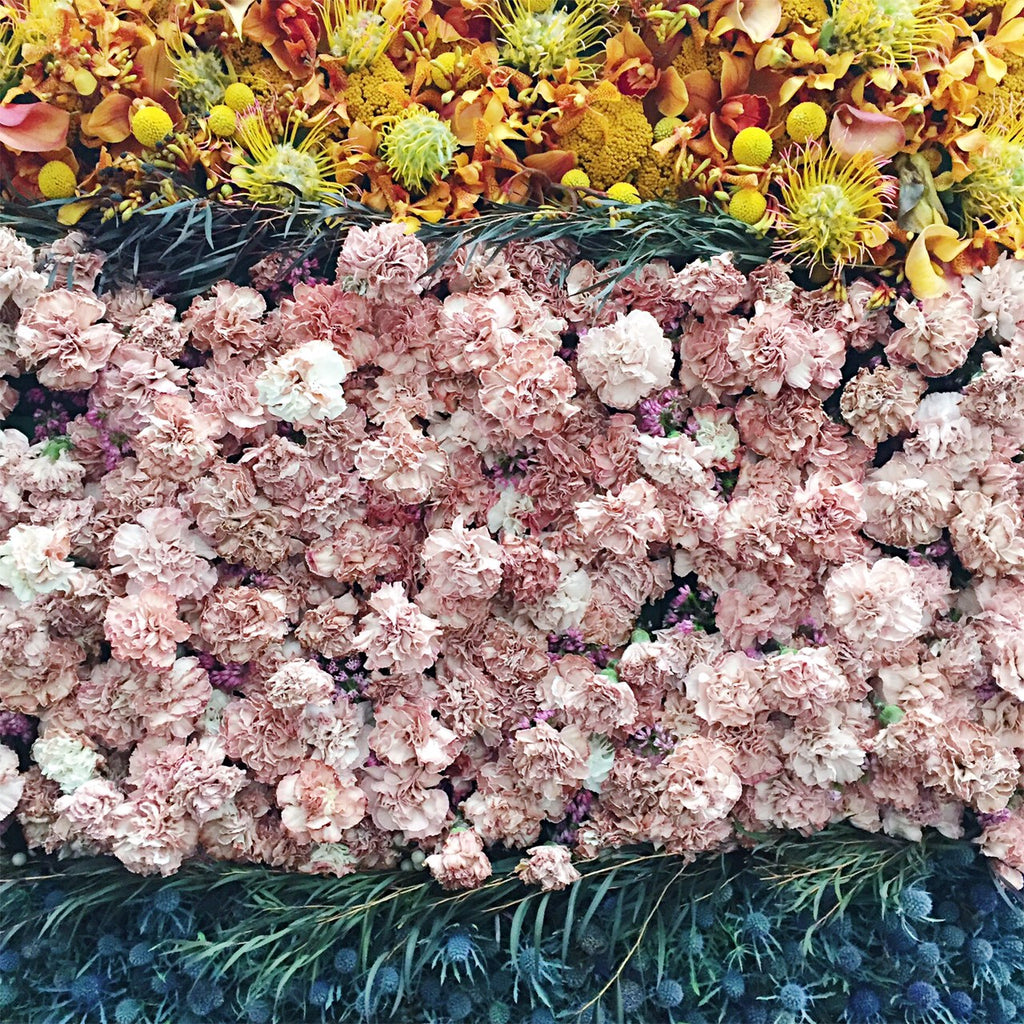 bouquets to art sf 2017 carnation