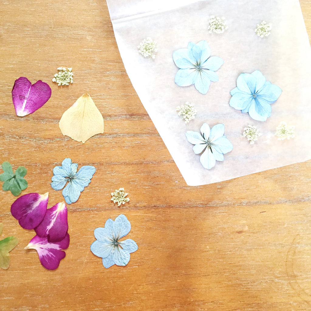 Flower Diy Project Pressed Flower Luminaries Impressed By Nature