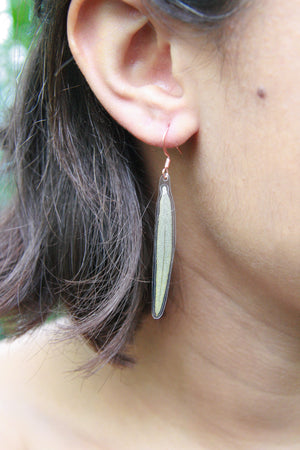 Green Sage Pressed Leaf Earrings