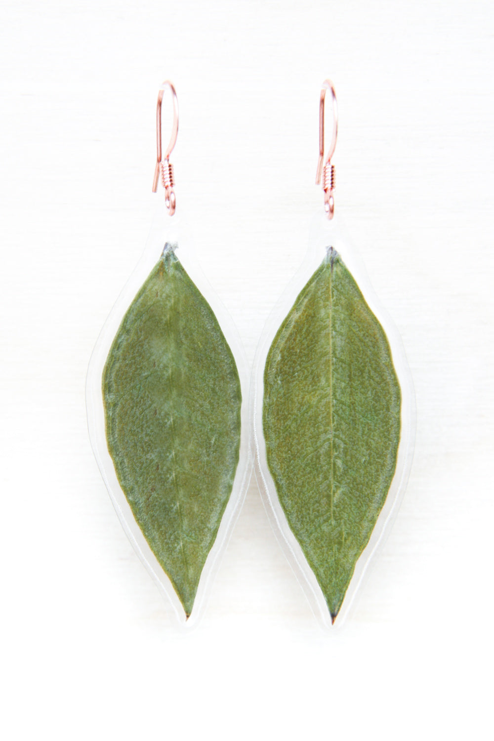 Green Myrtle Pressed Leaf Drop Earrings