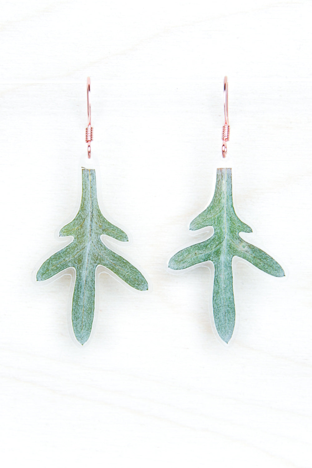 Green Dusty Miller Leaf Earrings