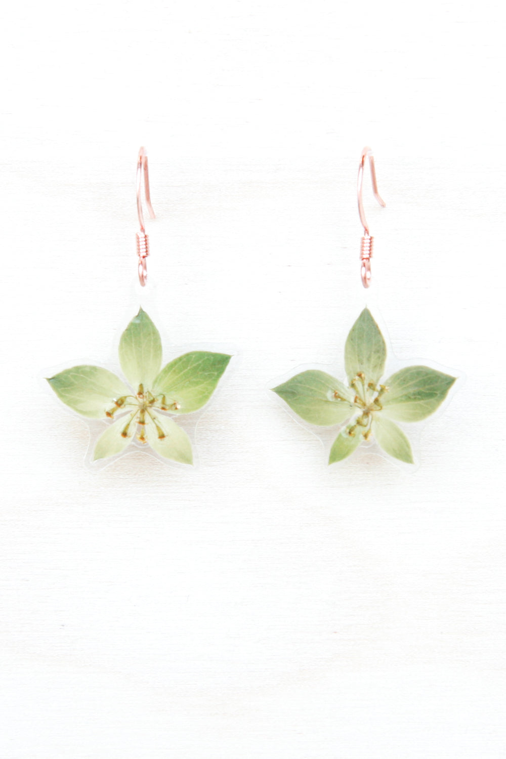 Green Bupleurum Flower Drop Earrings