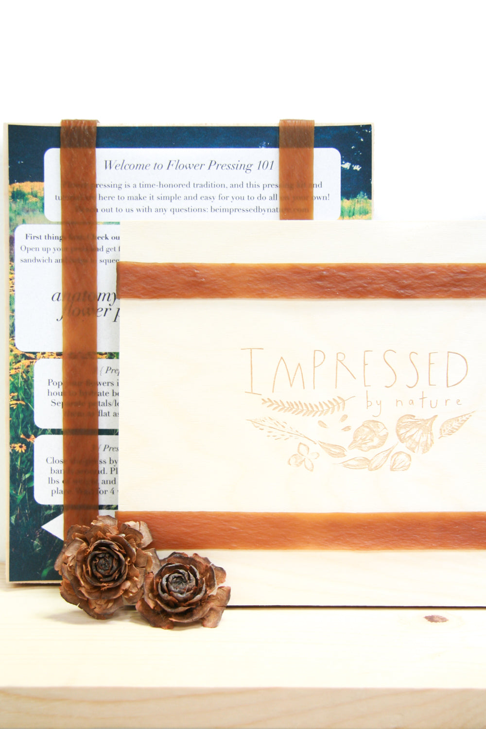 Large DIY Flower Pressing Kit