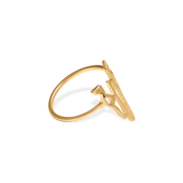 Buffalo Offering Ring Jewelry bethany-joy-lenz