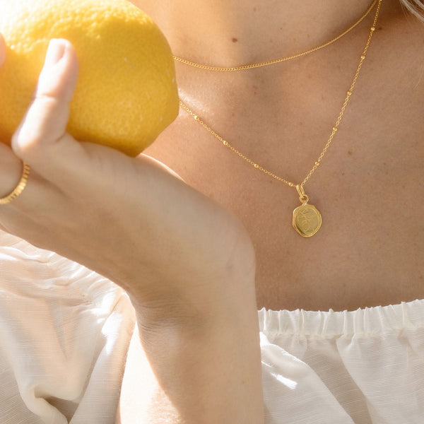 Eden Lemon Seal Necklace - Solid Gold Jewelry Stilnest