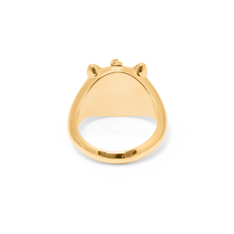 Gold Pigger Ring Mann Jewelry dandy-diary