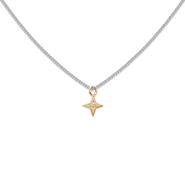 Gold Shooting Star + Silber Panzerkette Jewelry useless S (45cm)