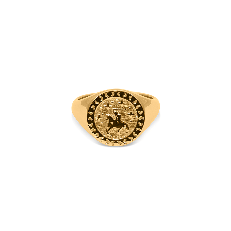 Knight in Shining Armour Adventure Ring Jewelry taylor-lashae 24ct Gold Vermeil XS - 49 (15.6mm)