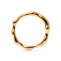 L'Or Liquide Ring Jewelry teetharejade 925 Silver Gold Plated S - 52 (16.6mm)