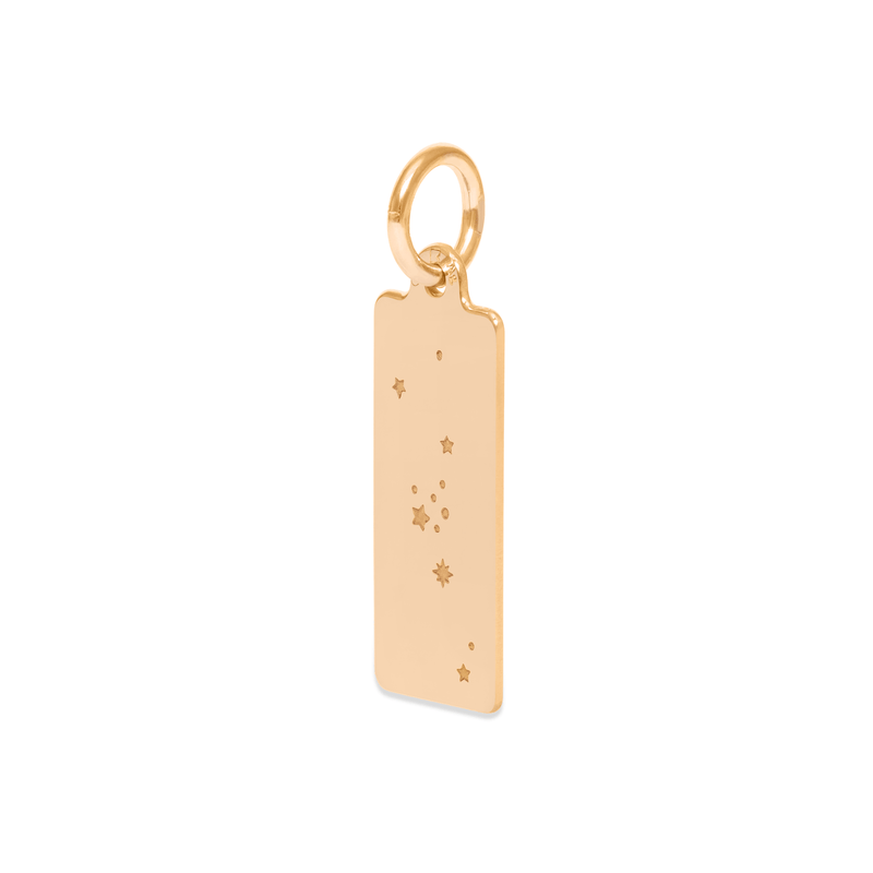 Make A Wish Jungfrau Constellation Tag Anhänger Jewelry luisa-lion