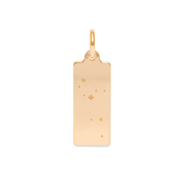 Make A Wish Löwe Constellation Tag Anhänger Jewelry luisa-lion 925 Silver Gold Plated